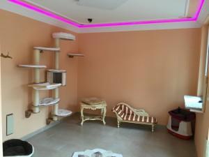 2.-Zimmer (1)